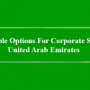 Available Options For Corporate Set Up – United Arab Emirates
